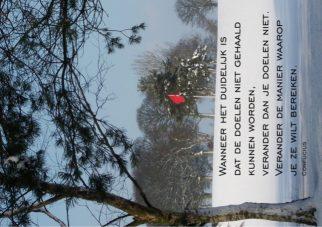 Inspiratiekaart doelgericht; Foto: Red flag van Mer de glace