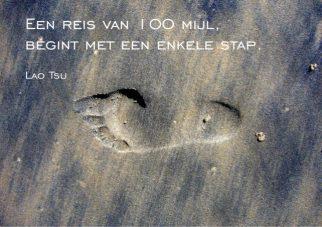 Inspiratiekaart footprint;Footprint van Temporalata
