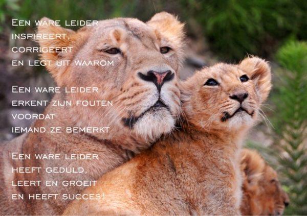 Set inspirerende kaarten over leiderschap