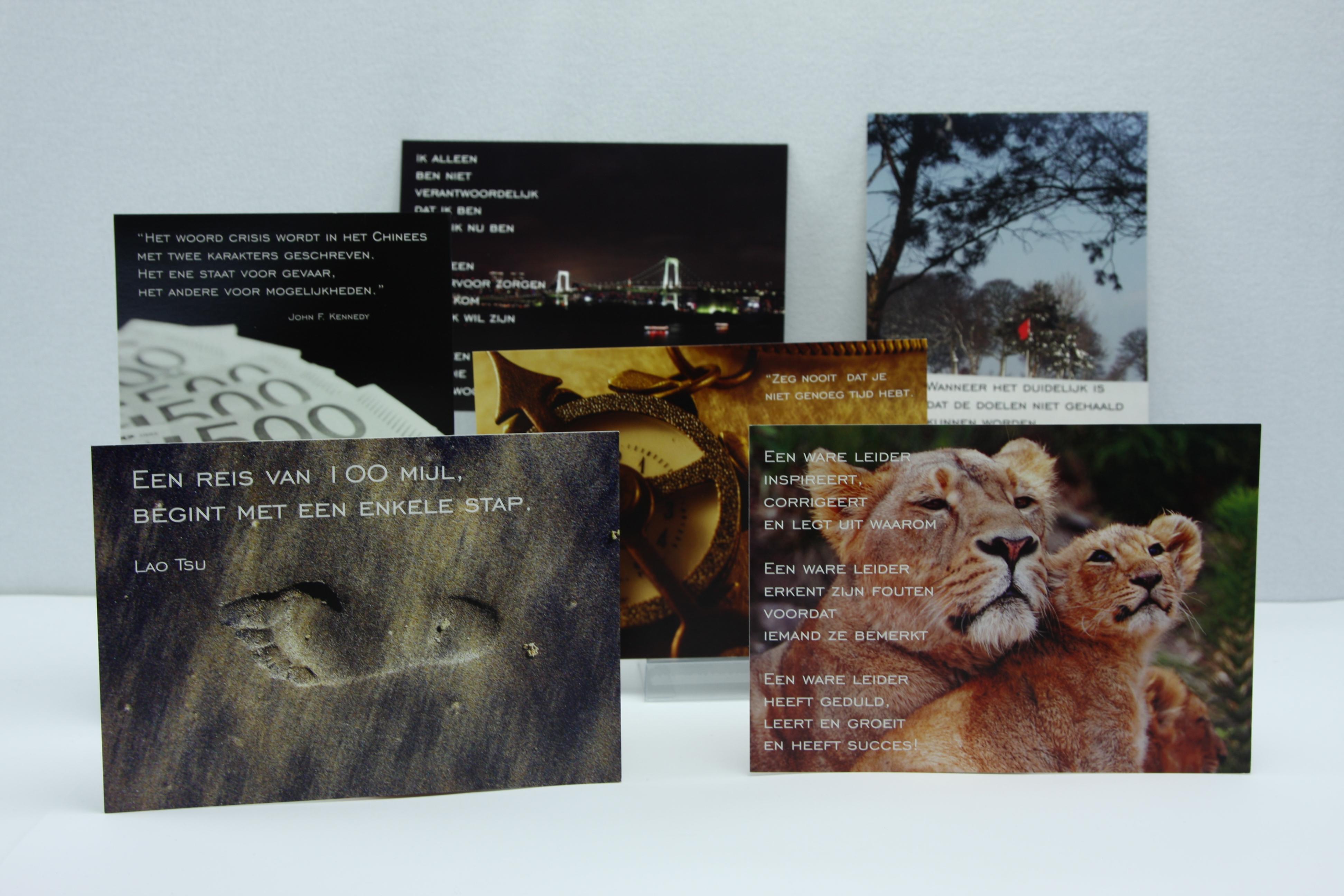 Citaten Over De Winter : Set inspirerende kaarten over leiderschap met pakkende citaten en