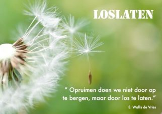 Loslaten; Foto: Fly away! by Inoc