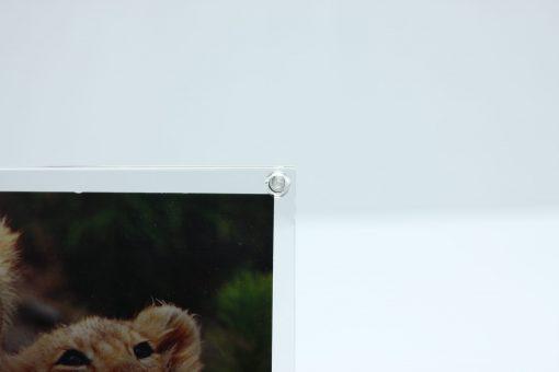 Fotodisplay Magnet A6