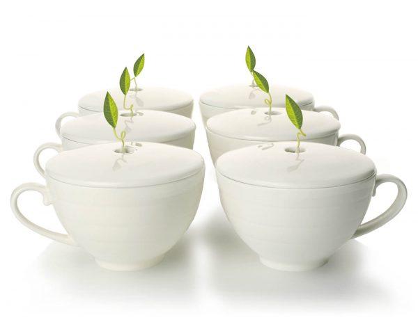 Theekop met deksel set van 6 van Tea Forté